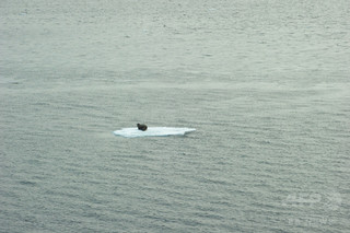 地球温暖化を2度未満に抑制しても、北極海の無氷状態は防げない 研究