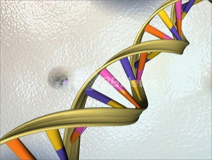 ヒトゲノムに4000万年前のウイルス遺伝子、阪大が発見