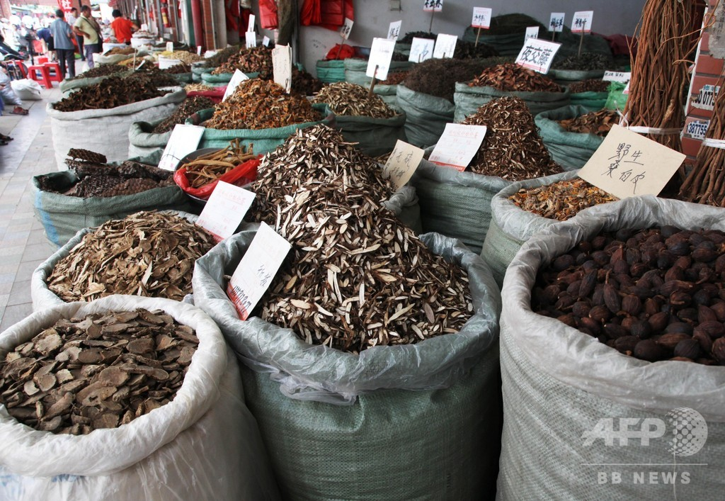 勢いを増す中国医薬業界、過熱する海外への輸出市場
