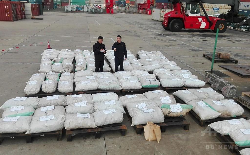 センザンコウのうろこ3トン超押収、中国で過去最大規模の密輸量