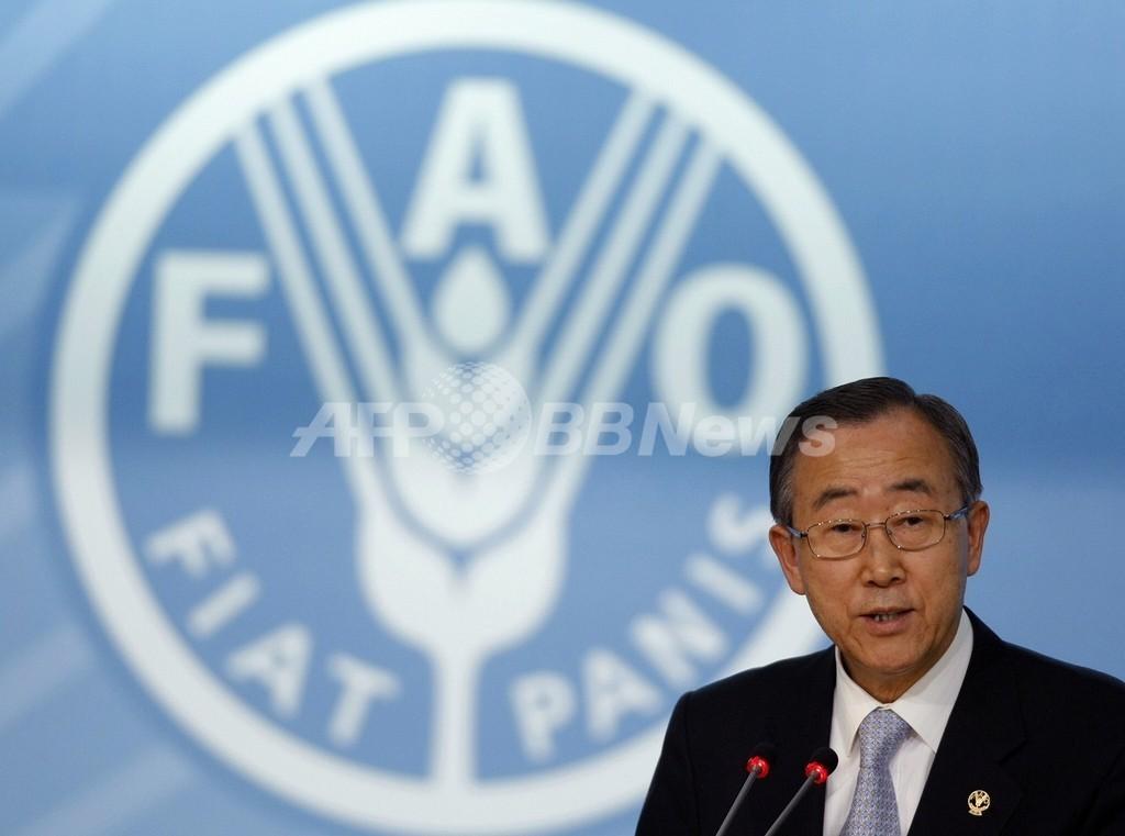 世界の食料生産、2050年までに70%増の必要 FAO