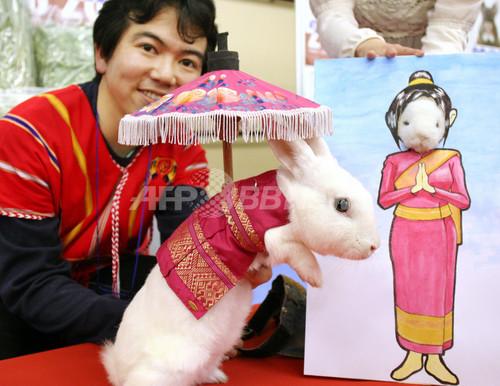 タイ風から女子高生風まで、ウサギのファッションショー 横浜