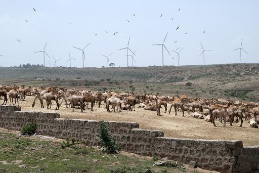 エチオピア、風力発電など再生可能エネルギー事業を強化