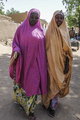 ボコ・ハラム、拉致少女をほぼ全員解放