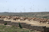 【特集】再生可能エネルギーの可能性