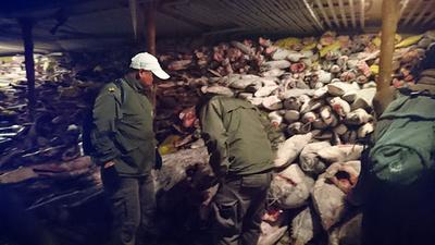 ガラパゴスで中国船籍漁船が密漁、乗組員らに禁錮刑 エクアドル
