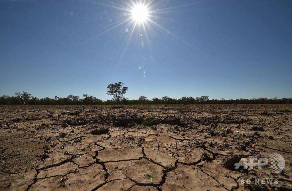気候変動が世界の食糧供給の脅威に 研究