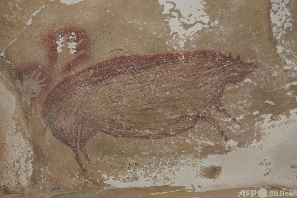 世界最古、4万5500年以上前の洞窟壁画 インドネシア洞窟で発見