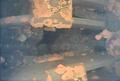 福島第1原発3号機に「燃料デブリ」とみられる物体、水中ロボ調査