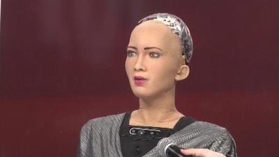 動画:自閉症児の同伴ロボから市民権持つロボまで、CESにぎわすロボットたち