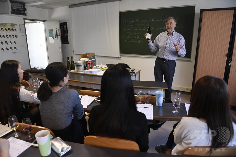 ワインの本場、仏ブルゴーニュに中国人学生急増 需要拡大背景に