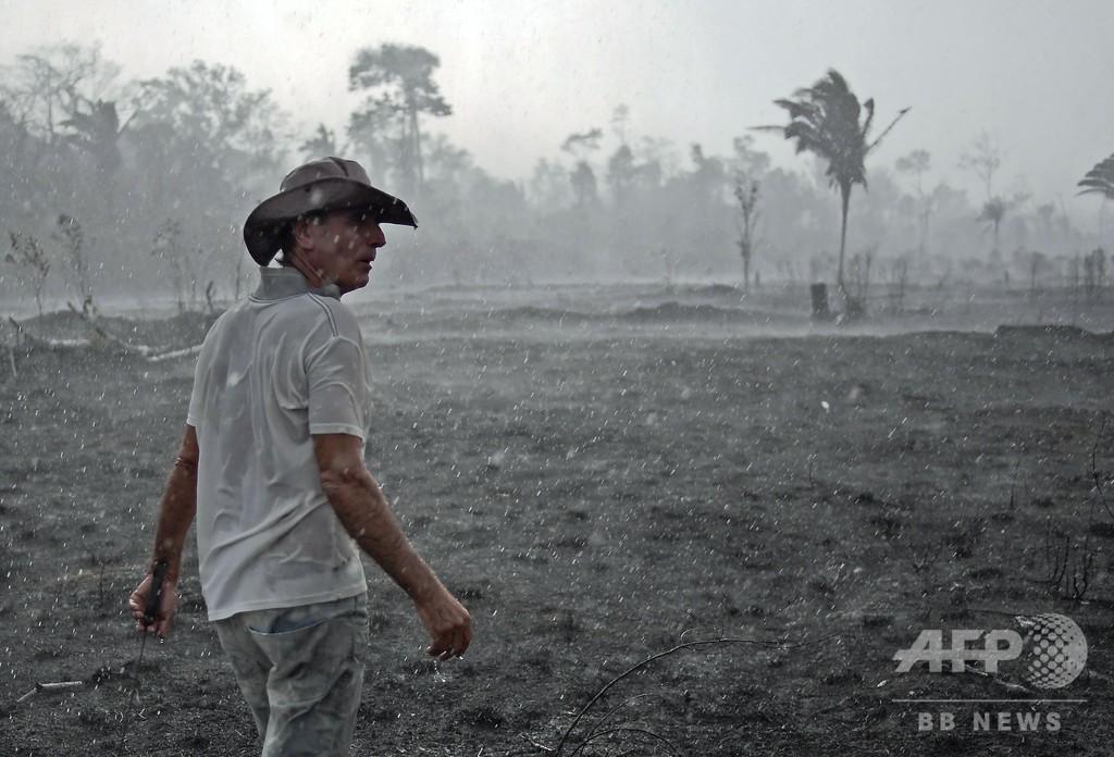 アマゾン森林火災、件数さらに増加 煙で健康に悪影響も