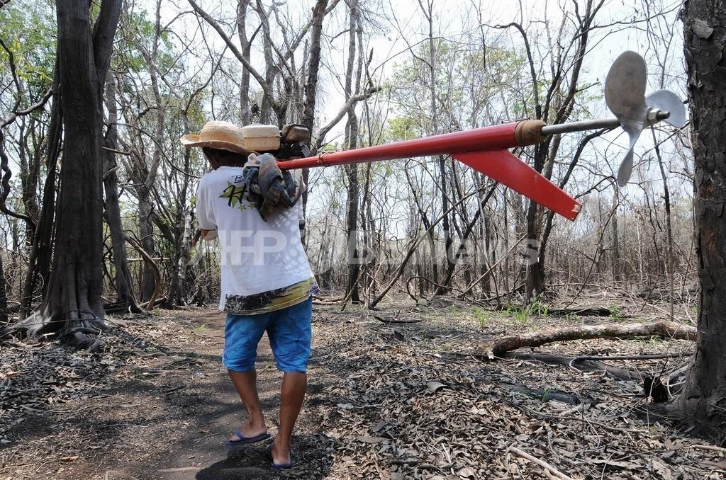 干ばつ深刻なアマゾン、CO2排出源になる危険性も 研究