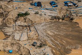 ペルーのアマゾン、森林破壊が加速度的に進行中 環境当局