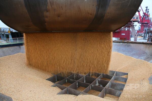 中国が対米関税 「大豆」を切り札にした理由とは