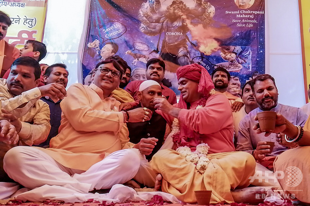 新型コロナ対策パーティーで「牛の尿飲み」強要、与党党員を逮捕 インド
