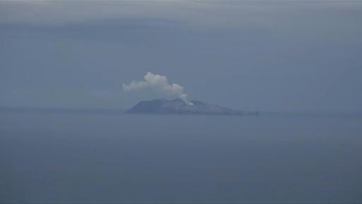 動画:NZ火山噴火、死者8人 不明者9人に
