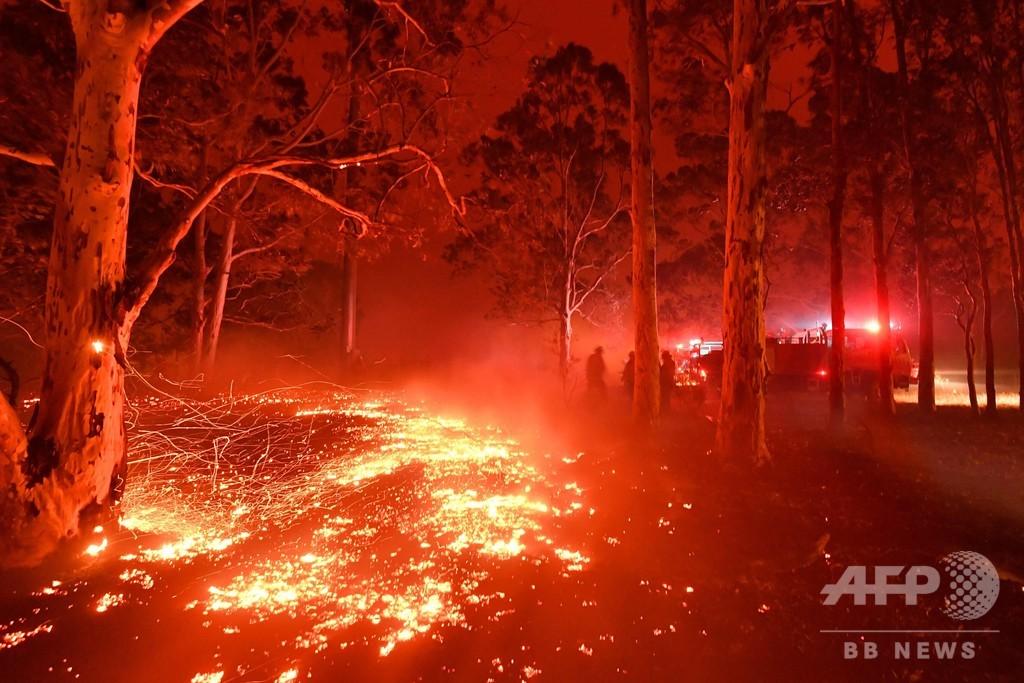 豪州の森林火災、見直される先住民の「野焼き」