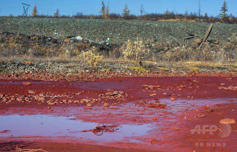 ロシアの川が血の色に… 化学物質漏出か 政府が調査