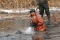 「レンコン掘りのプロ」が活躍、真冬の収穫期 中国・山東省