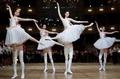 オペラ座舞踏会にトップレス女性、ウクライナ大統領に抗議 オーストリア