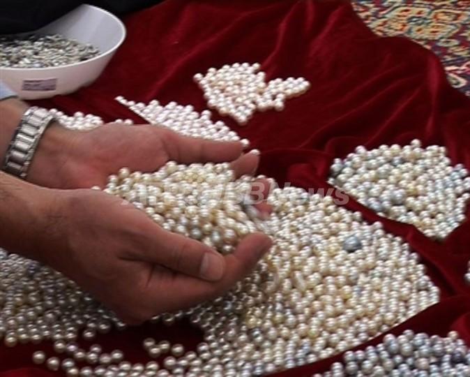 【動画】目指せ真珠大国、UAEのパール産業復活なるか