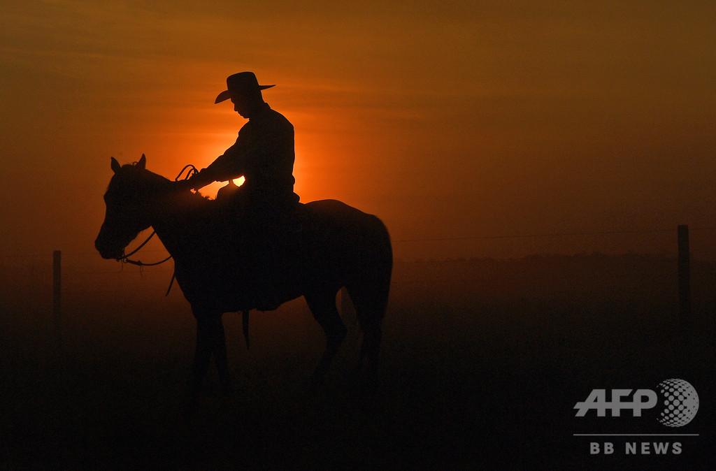 【今日の1枚】落日、人も家畜も家路へ