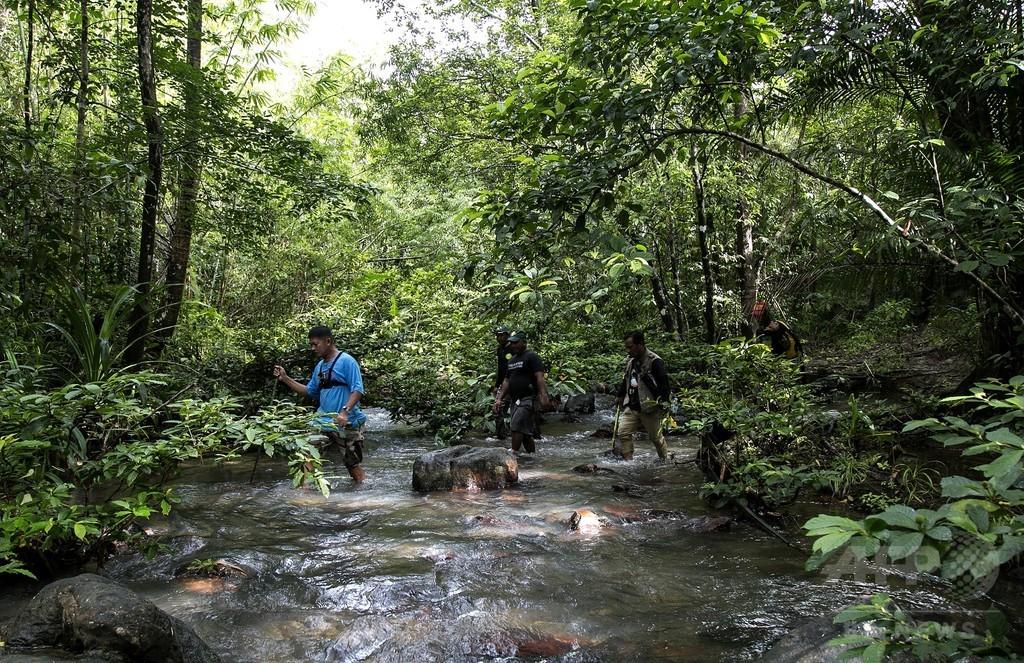 命を懸けて楽園を守る民間環境警備隊、フィリピン・パラワン島