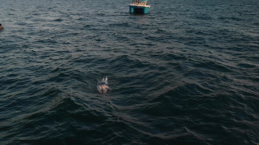 動画:乳がん治療を受けた米女性スイマー、54時間ノンストップで英国海峡横断に成功
