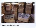 【AFP記者コラム】「数字ではなく名前で」、殺された人々の記憶を刻むプロジェクト
