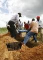 ジンバブエ、コレラによる死者が1500人以上に