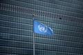 国連職員3人に1人がセクハラ体験、初の性被害調査