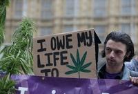 英議員ら、大麻入り飲食物提供の「お茶会」参加 合法化目指す