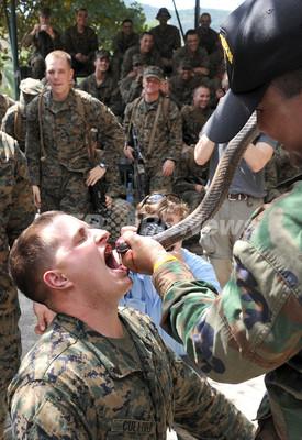 サソリ食べ、コブラの血飲むサバイバル訓練 日本も参加の6か国合同軍事演習