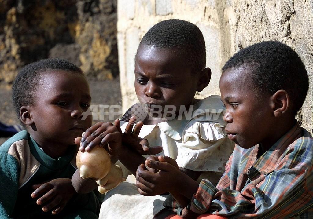 南アフリカ、エイズ孤児増加 養子縁組は減少