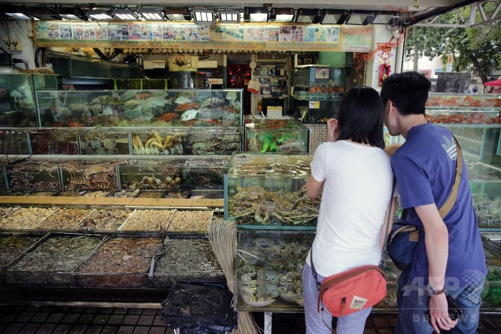変わる?香港の食習慣、激減する魚介を守れるか