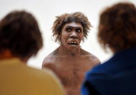 現生人類最古のDNA解読、「人類大移動」解明手掛かりに 研究