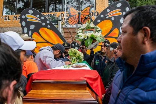 違法伐採に抗議のチョウ保護活動家、遺体で発見 メキシコ