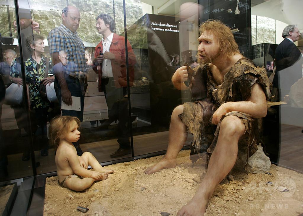 鳥肉を最初に食べたのはネアンデルタール人、洞窟から痕跡