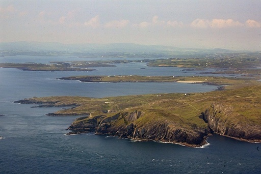 8年前の手紙、大西洋を渡りアイルランドに漂着