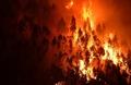 ポルトガル森林火災、地獄と化した国道 「どこもかしこも炎の海」