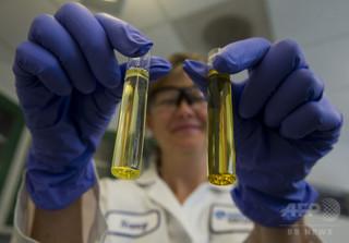 魚油サプリ、認知機能低下抑制に効果なし 米研究