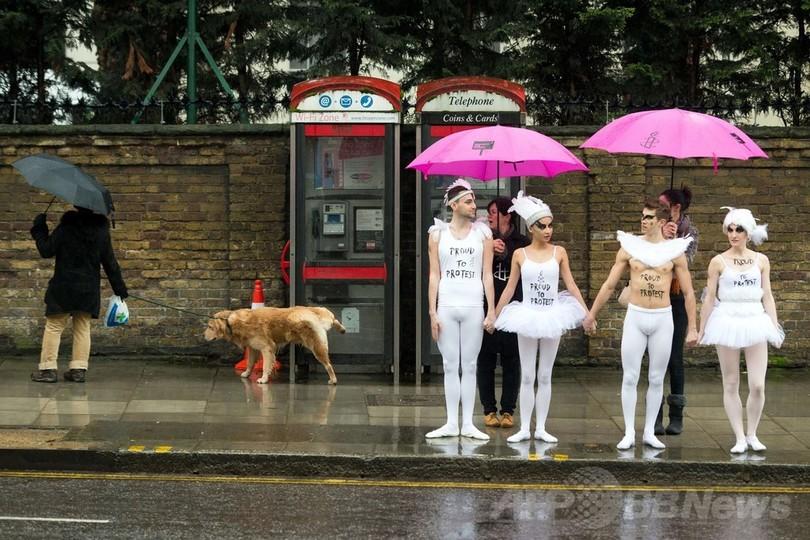 「白鳥の湖」でロシアの反同性愛法を非難、ロンドン