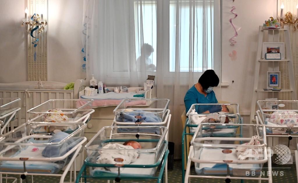 ロシア、「代理母出産児チャーター機」で中国への送り届け検討