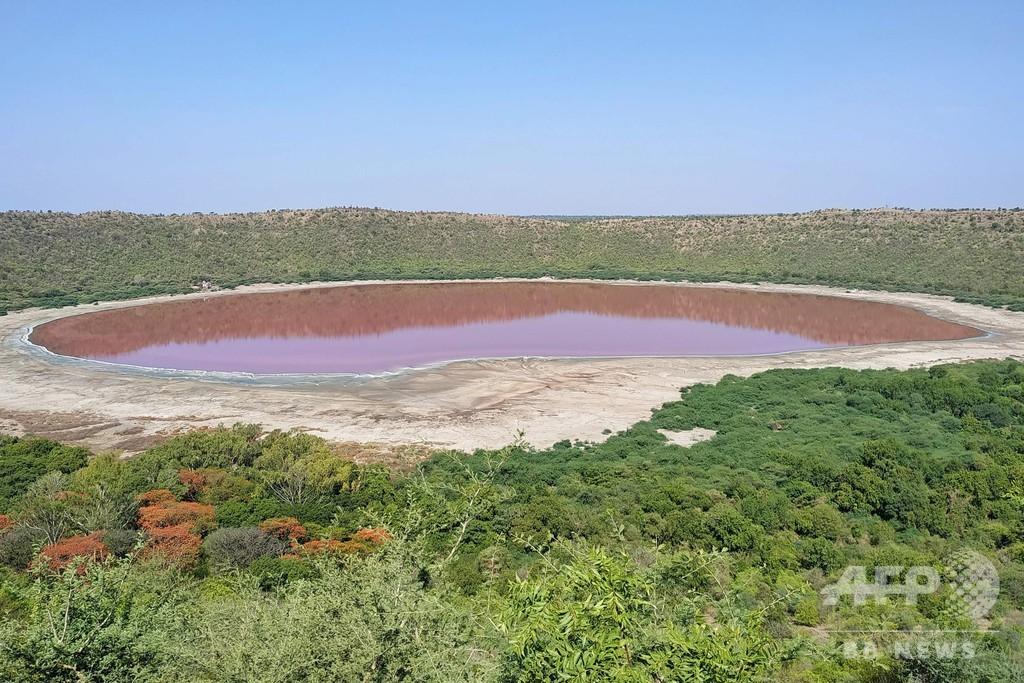 湖が一夜にしてピンク色に、塩分濃度と藻類が原因か インド