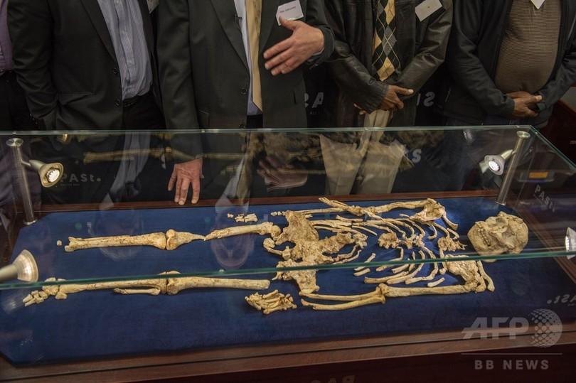 初期人類「リトルフット」の化石を初展示、史上最も完全な形 南ア