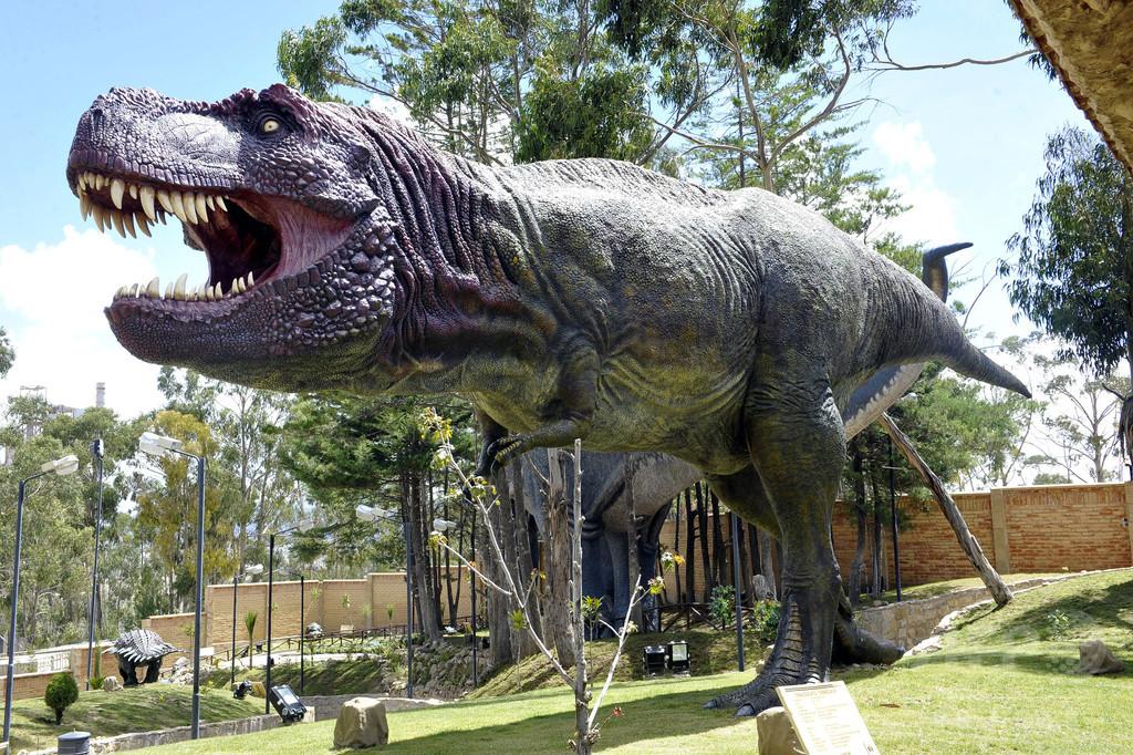 ティラノサウルスは群れで行動か、新たな足跡化石が示唆