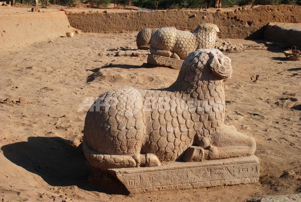 スーダンでヒツジの石像出土、サハラ以南アフリカ古代文明の解明に期待