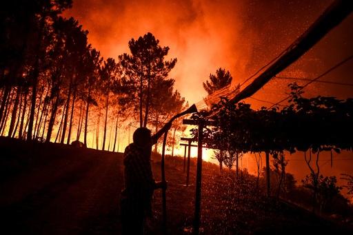 ポルトガル中部で山火事、消防隊員1700人が消火活動