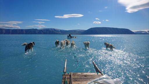 海を渡る犬ぞり!? 海氷の上に水 グリーンランドの「普通ではない日」